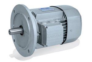Motors de CA de alta eficiencia IE2